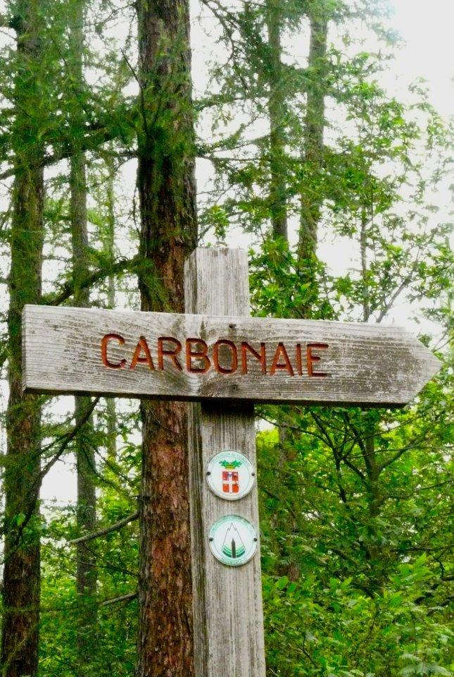 La via delle Carbonaie