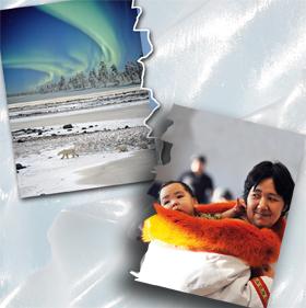Paesaggi, animali e popoli dei ghiacci in mostra a Pinerolo