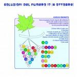 soluzioni n17