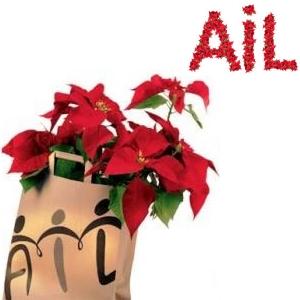 Stelle di Natale AIL: il 7-8 dicembre a Pinerolo e Bibiana