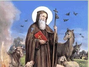 Sant'Antonio. In diverse parrocchie della diocesi la tradizionale benedizione degli animali
