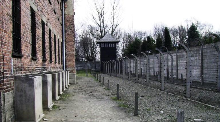 Giornata della memoria: i genocidi del XX secolo