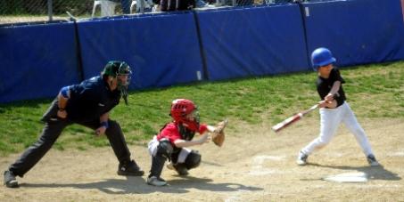 Pinerolo. Spunta una petizione per chiedere a Buttiero un campo da baseball