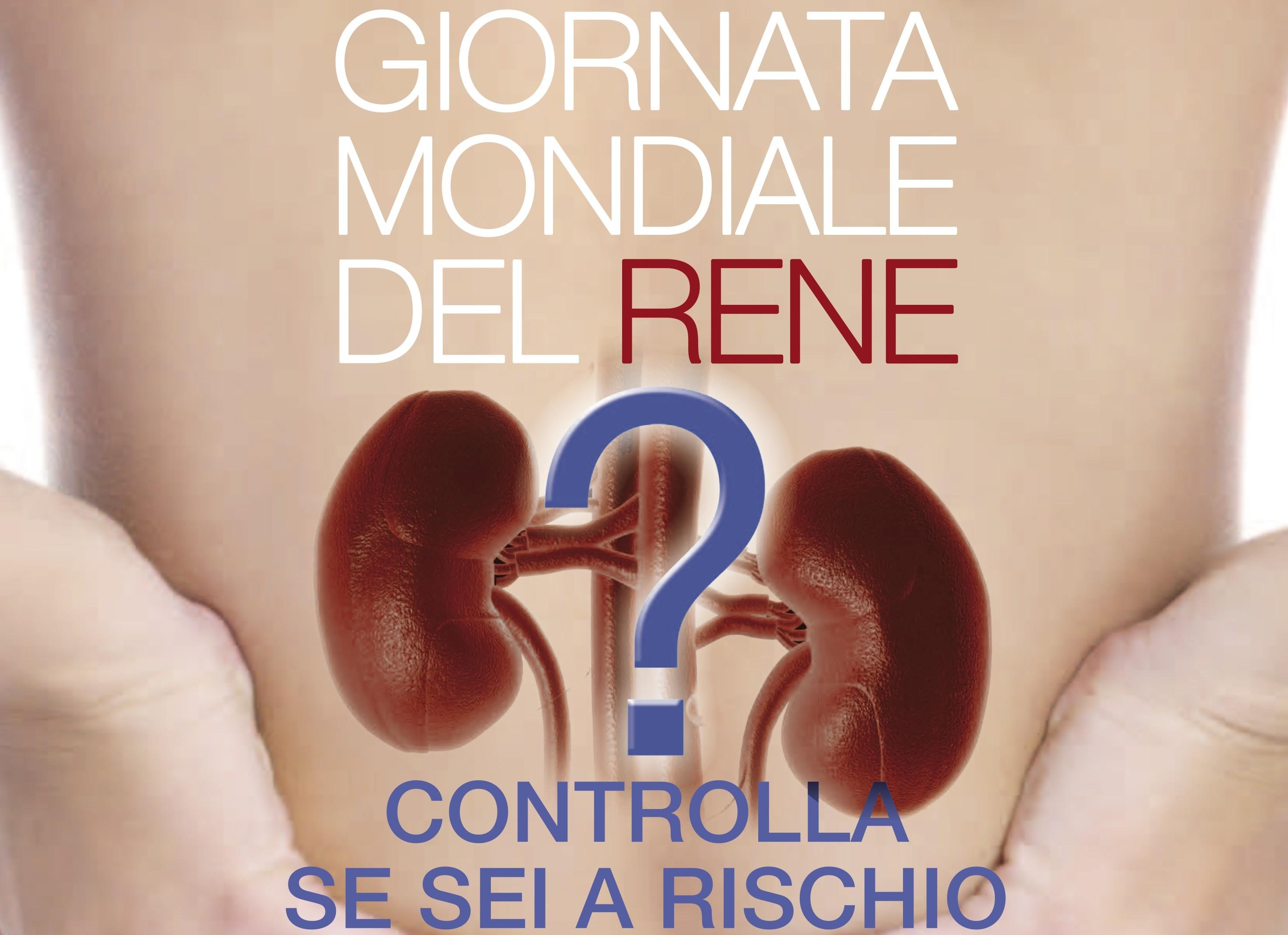Il 13 marzo si celebra la Giornata Mondiale del Rene. A Pinerolo esami e informazioni nell'atrio dell'ospedale