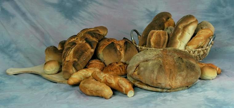 Dove potremo comprare il pane perché costoro abbiano da mangiare?