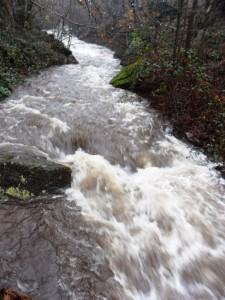 Il torrente Noce a Cantalupa