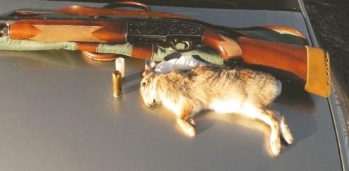 Battute di caccia vicino alle abitazioni: le segnalazioni della LAC