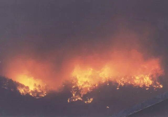 Cantalupa. Incendio causato da sterpaglie dimenicate