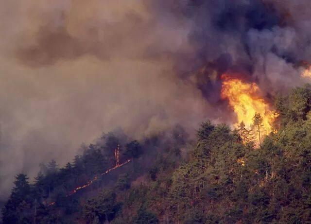 Incendio sul monte San Giorgio del febbraio 1999 (Foto da profilo Facebook Aib Piossasco)