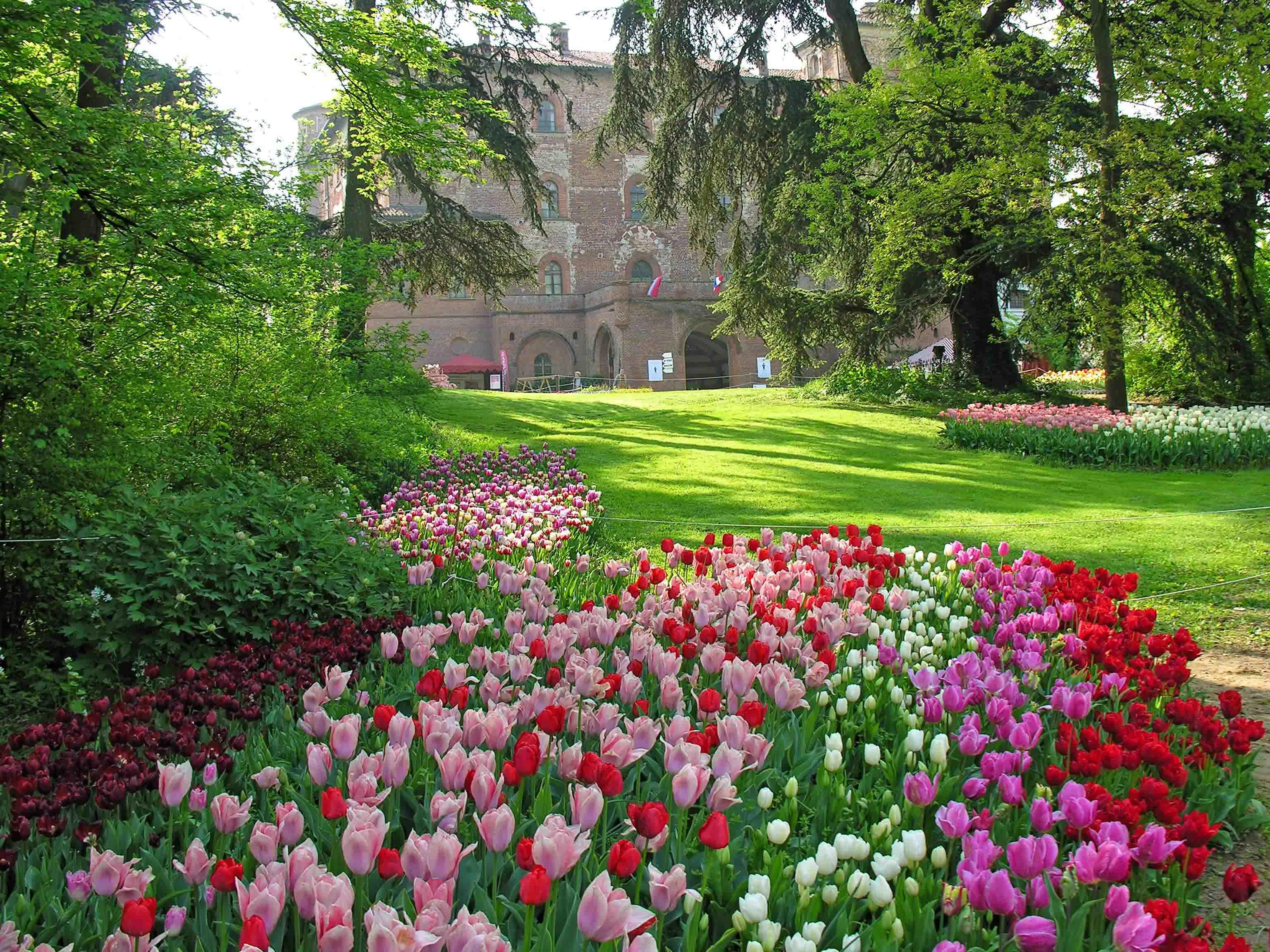 """Al castello di Pralormo si prepara """"Messer Tulipano"""" alla maniera di Arcimboldo"""