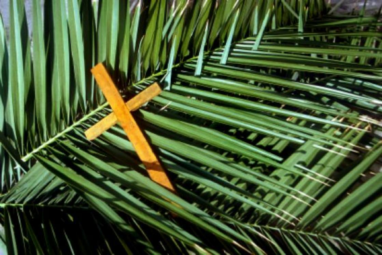 [ video ] A tu per tu con Derio. Domenica delle Palme: di un Dio così ci possiamo fidare!