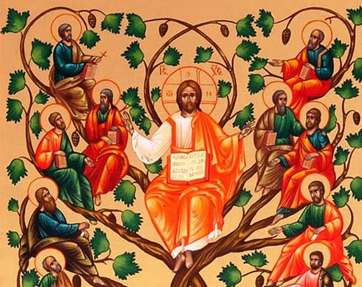 La linfa di Cristo