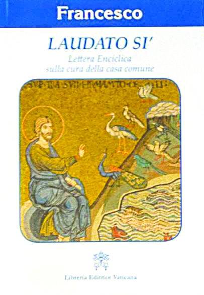 """Guida alla lettura dell'enciclica """"Laudato si'""""sulla cura della casa comune (parte II)"""