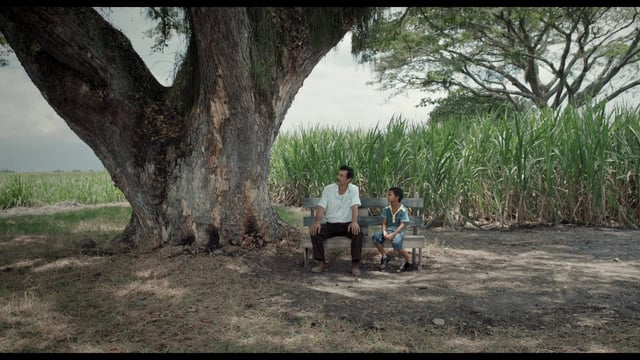 Cinema. Il mondo fragile e poetico di Acevedo da oggi nelle sale italiane