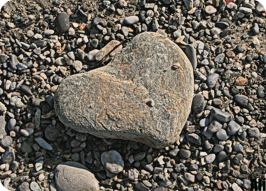 Per la durezza del vostro cuore