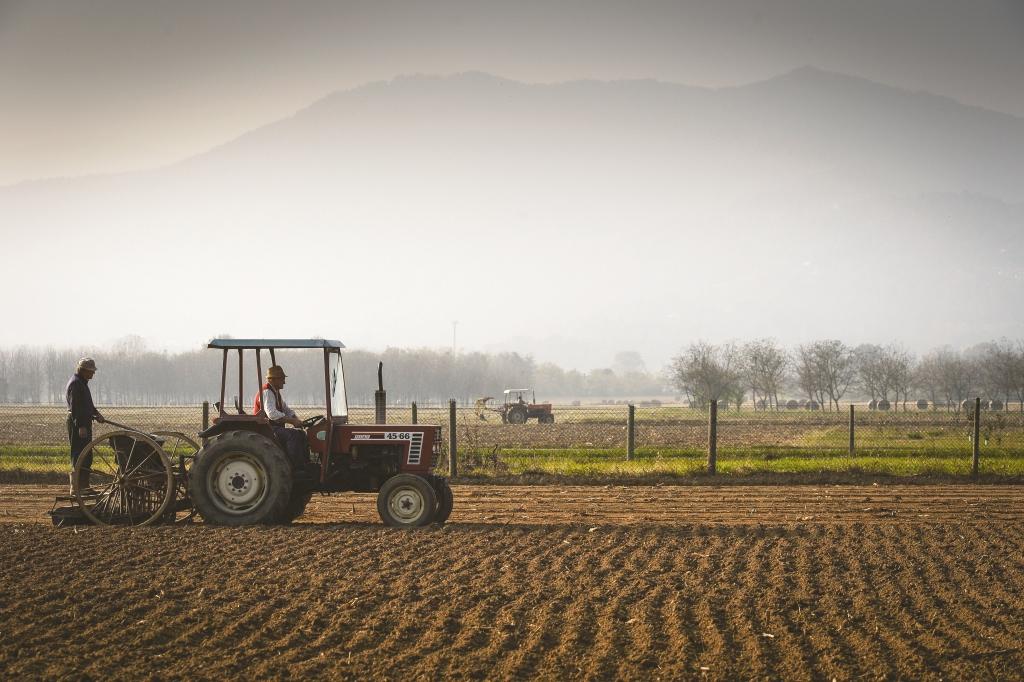 """Con la """"Giornata del Ringraziamento""""Coldiretti celebra la nostra agricoltura"""