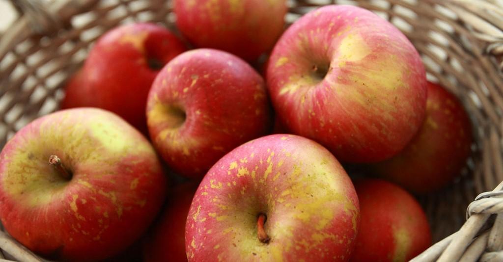 """Caprie. Dal 6 all'8 novembre la rassegna enogastronomica """"La mela e dintorni"""""""