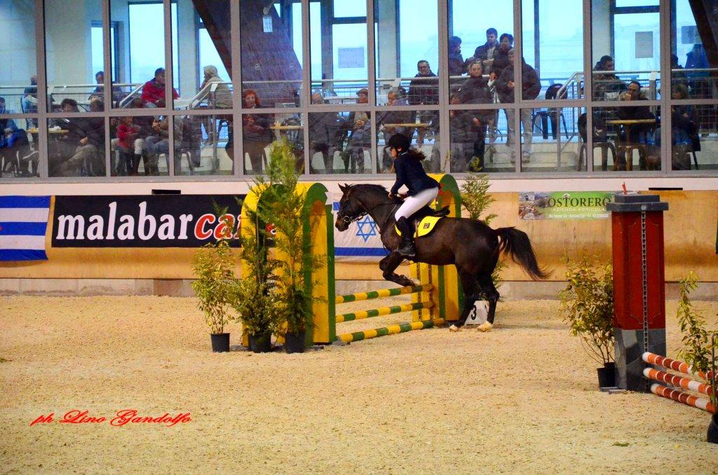 Abbadia. Prosegue il programma dei concorsi ippici al centro equestre
