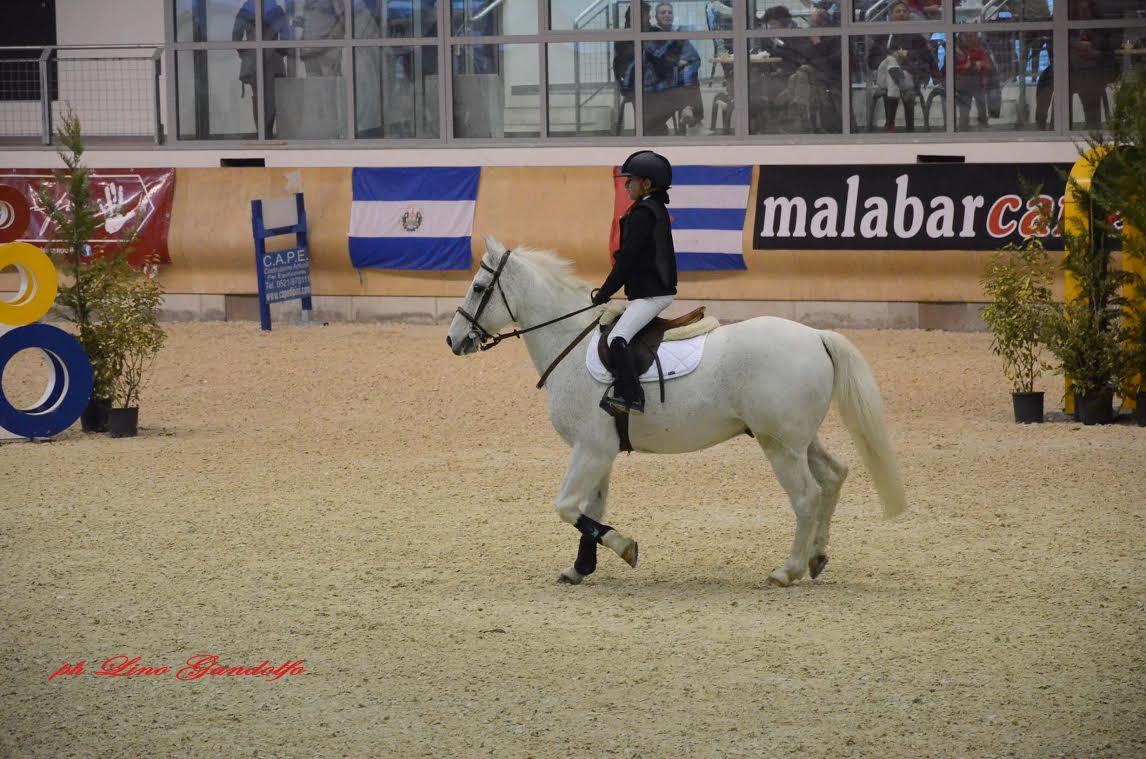 Concorsi ippici di Pinerolo: i risultati del concorso pony