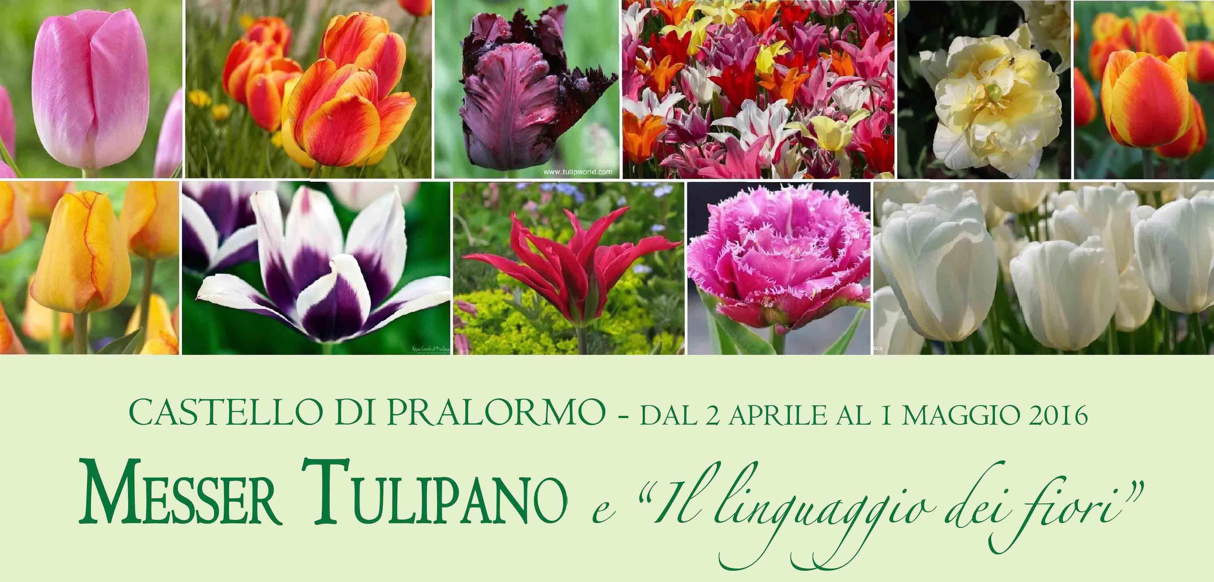 """Pralormo. Dal 2 aprile all'1 maggio torna al Castello l'evento floreale """"Messer Tulipano"""""""
