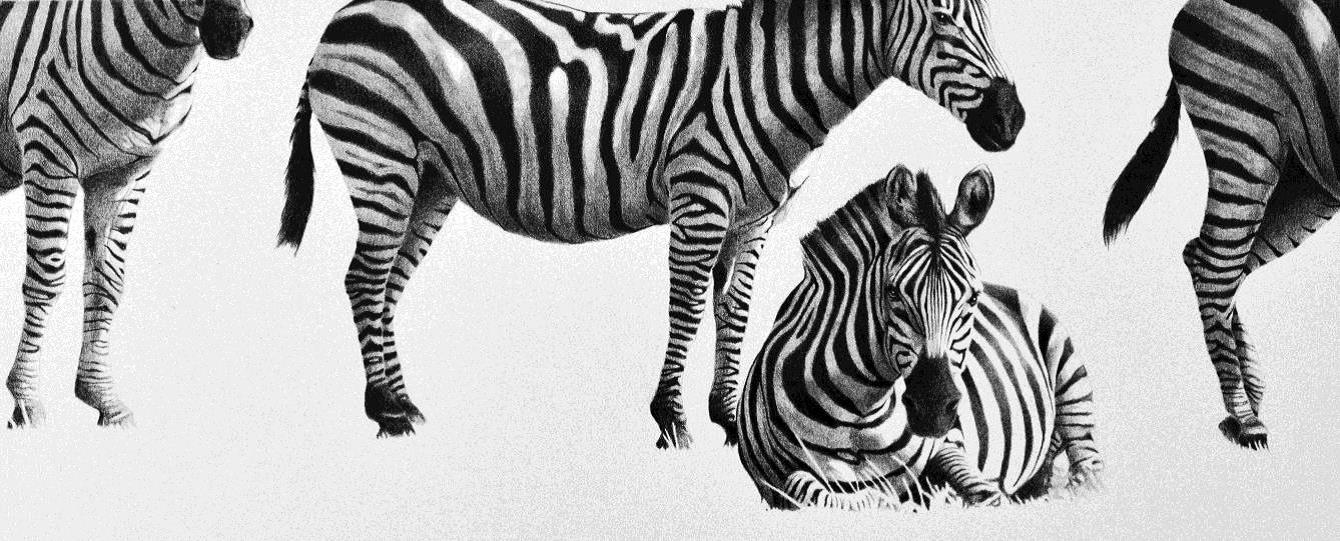 """""""Altri animali tra realismo e fantasia"""": dal 7 maggio in mostra alla Galleria Losano"""