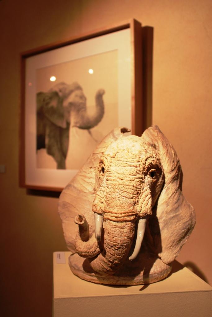 """[Photogallery] Inaugurata presso la Galleria Losano la mostra """"Altri animali"""""""