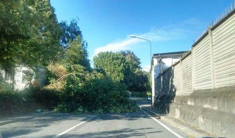 Pinerolo. Disagi a causa del forte vento che sta investendo tutto il Piemonte