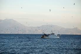 """Domenica 10 luglio si celebra la """"giornata del mare"""""""