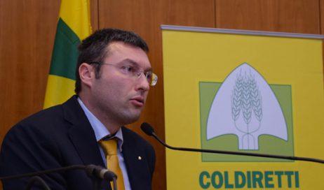 Coldiretti Torino chiede alla Regione maggiori risorse e l'apertura di nuovi bandi per i giovani