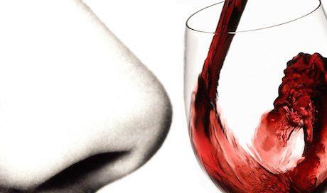 degustazione-vino-esame-olfattivo