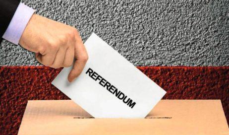 Referendum costituzionale: che cosa c'è in gioco?