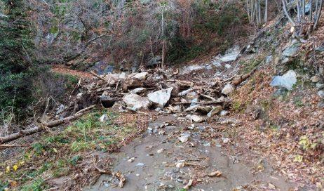 """Alluvione. Coldiretti Piemonte chiede alla regione un tavolo di crisi: """"settore agricolo gravemente colpito"""""""