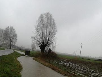 Alluvione novembre 2016: Coldiretti chiede  l'intervento del commissario Sergio Chiamparino