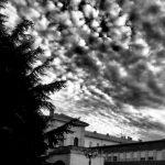 Pinerolo della cavalleria - Foto Righero (2)