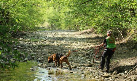 Recuperata nel torrente Germanasca la salma di un 82enne di Perrero