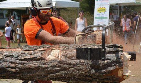 Che cosa non si fa con il legno!