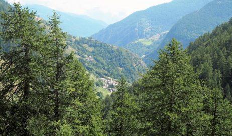 Regione Piemonte. ROSTAGNO (PD): PIANO PAESAGGISTICO DOPO ANNI DI ATTESA ARRIVA IN AULA