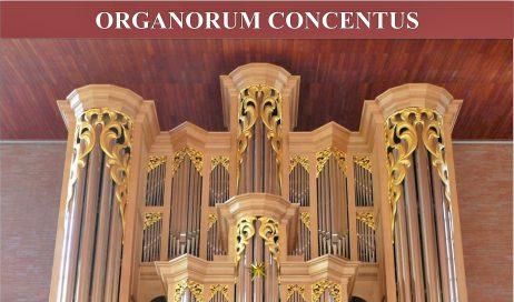 Walter Gatti alla Visitazione per la Rassegna organistica