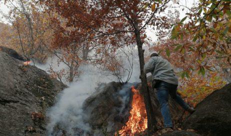 Emergenza incendi. La Protezione civile dice no all'intervento dell'esercito