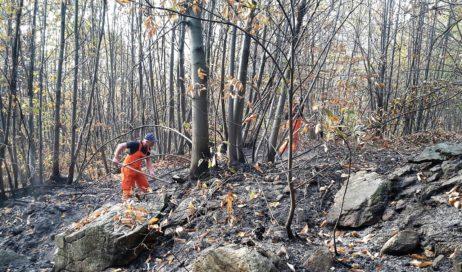 Regione Piemonte. Revocato lo stato di massima pericolosità per gl'incendi boschivi