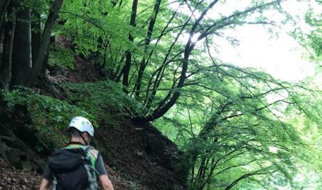 Ritrovato senza vita il corpo dell'uomo (78 anni) disperso nei boschi di Pinasca