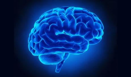 Settimana Mondiale del Cervello. Il 16 marzo a Pinerolo un incontro sulla prevenzione e cura delle malattie del sistema nervoso