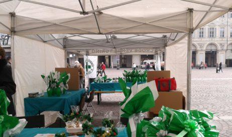 Croce Verde Torino: uova di Pasqua a sostegno del progetto di Teleassistenza e Telesoccorso