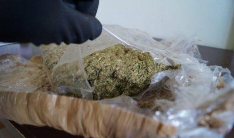 Coltivava e spacciava marijuana. Arrestato un 50enne di Barge
