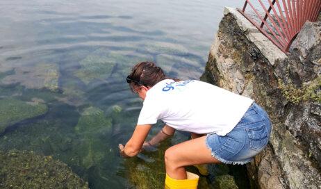 La Goletta dei Laghi di Legambiente il 9 luglio sui laghi Maggiore, d'Orta, Viverone e Avigliana