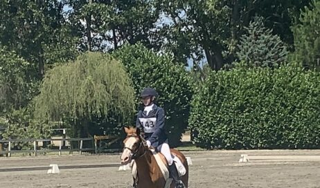 Equitazione. Si fanno onore gli allievi del Centro Sport Equestre G.i.r.
