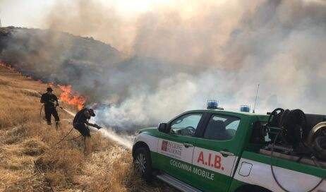 Incendi in Calabria e Sicilia: i nostri AIB hanno conquistato il cuore del Sud